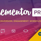 Elementor Pro – Original License Lifetime