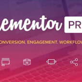 Elementor Pro 3.0.7 – GPL License – Lifetime