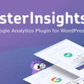 MonsterInsights Pro 7.13.1 – Google Analytics